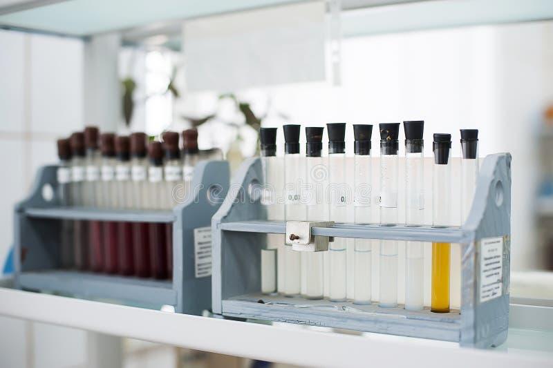 Boccette vuote Attrezzatura di analisi del laboratorio Laboratorio chimico, prova-tubi della cristalleria immagini stock