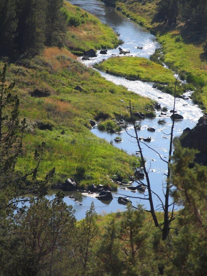 Bochtige rivier stock afbeelding