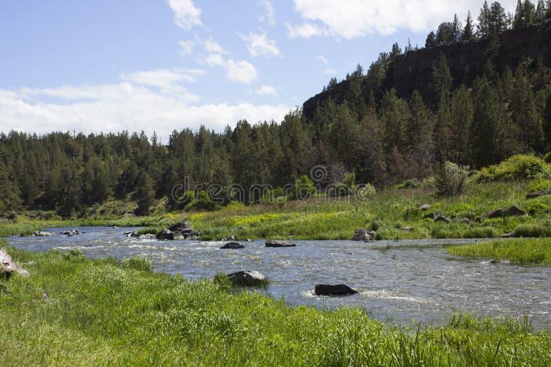 Bochtige Rivier in Smith Rock State Park royalty-vrije stock foto