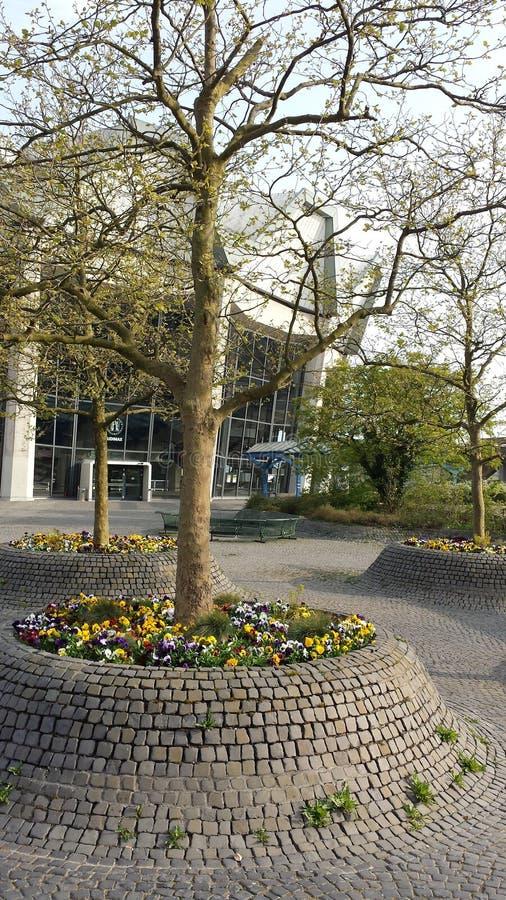 Bochum Tyskland - April 24, 2015: Universitetsområde Ruhr-Universität Bochum fotografering för bildbyråer