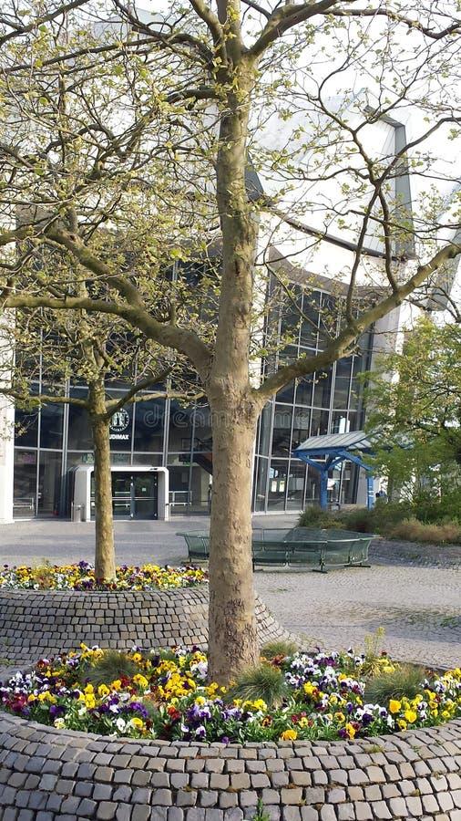 Bochum Tyskland - April 24, 2015: UniversitetsområdeRuhr-universitet Bochum royaltyfria foton