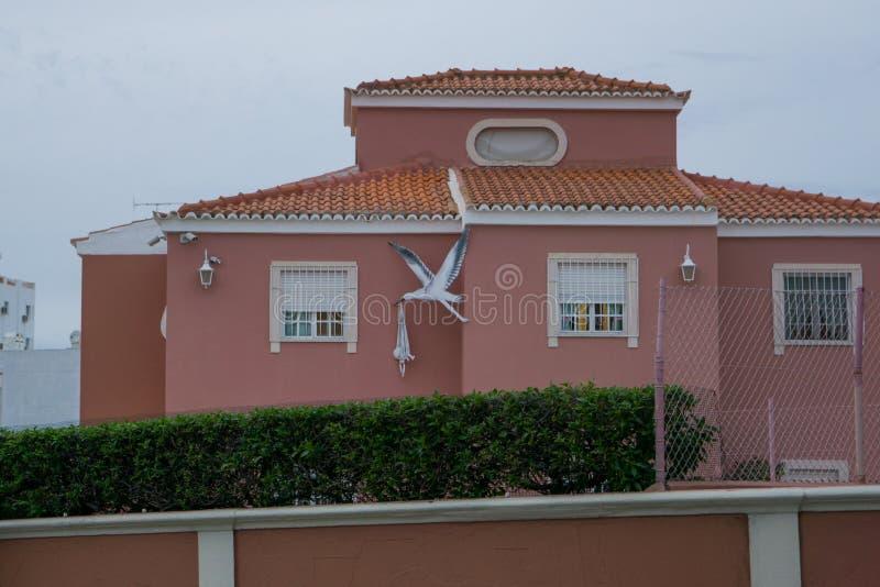 Bocian niesie dziecko motyw na stronie szkoła w Faro, Algarve, Portugalia zdjęcia royalty free