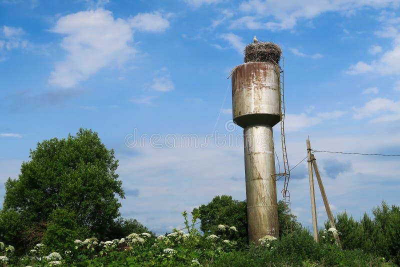 Bocian w gniazdeczku na ośniedziałym wieża ciśnień zdjęcie stock