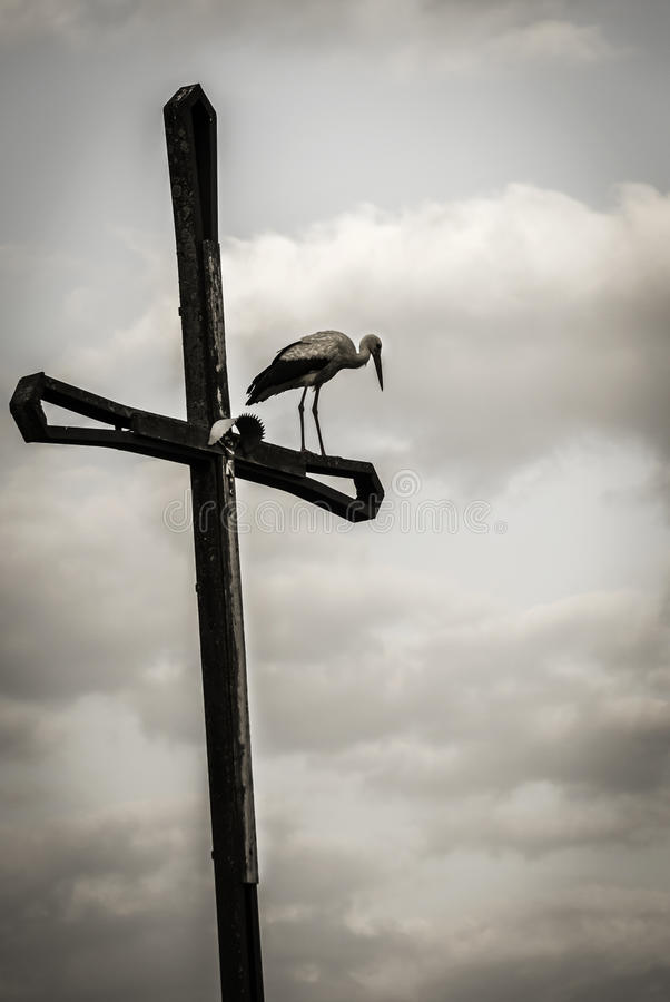 Bocianowy obsiadanie na krzyżu, Polska obrazy stock