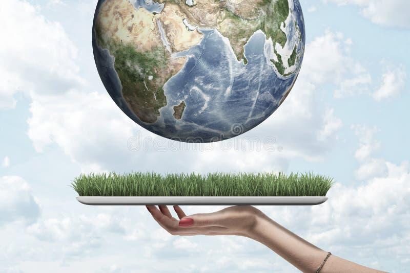 Boczny widok trzyma cyfrową pastylkę z trawą na ekranu i uprawy zbliżeniu ziemia nad ono w powietrzu przeciw kobiety ręka obrazy royalty free