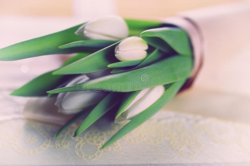 Boda blanca del cordón del tulipán fotos de archivo libres de regalías