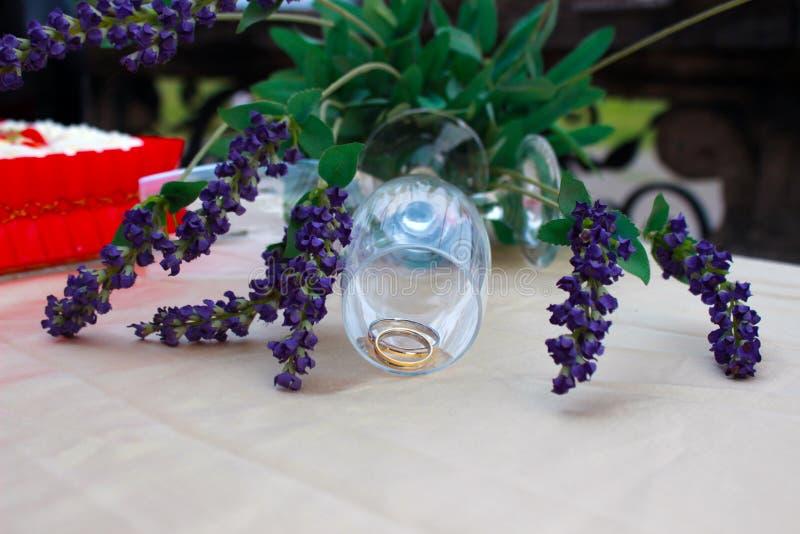 Boda de los anillos de bodas fotos de archivo libres de regalías