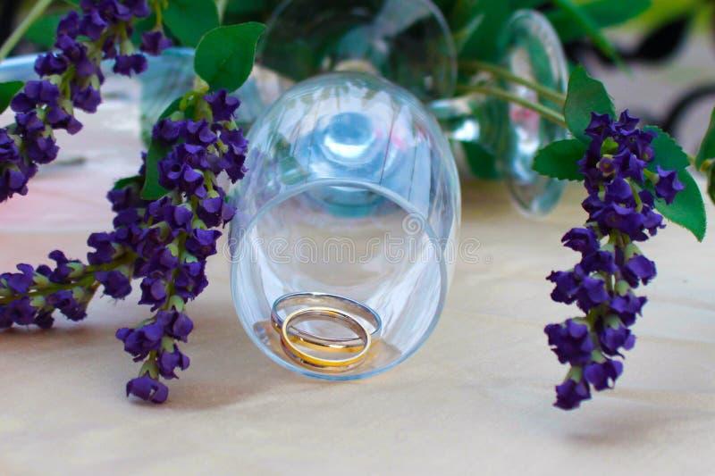 Boda de los anillos de bodas imagen de archivo libre de regalías