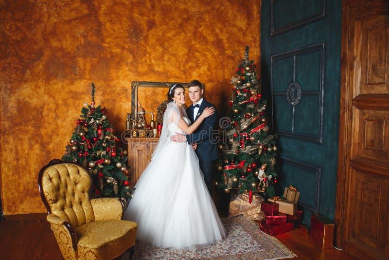 Boda del invierno Amantes novia y novio en la decoración de la Navidad HGroom y novia junto Junte el abrazo Día de boda foto de archivo libre de regalías