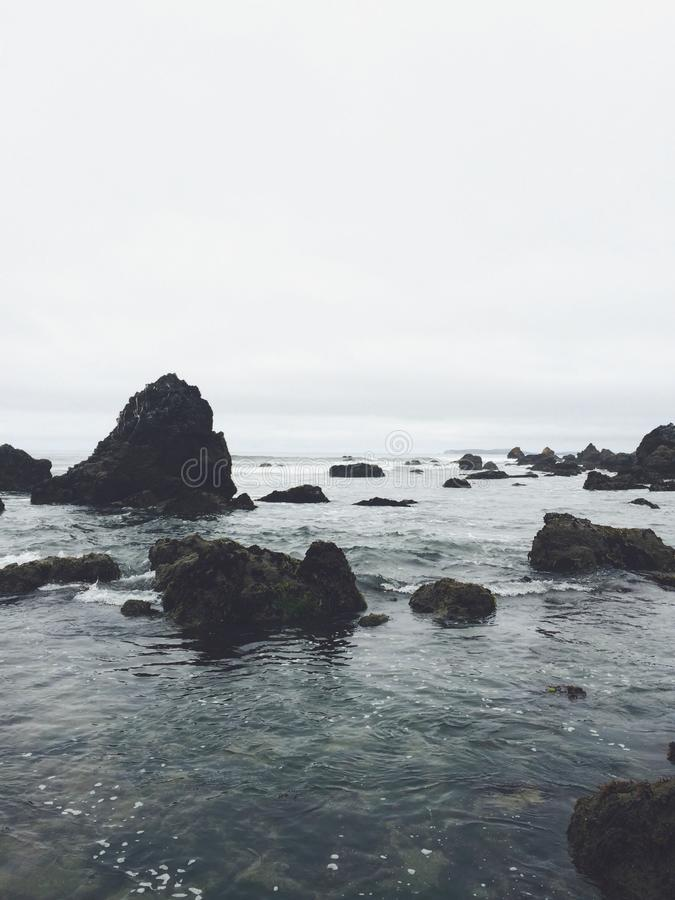 bodega bay stock photo