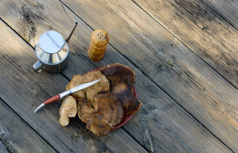 Bodegon met distelpaddestoelen wordt gemaakt op oude lijst IV die stock foto's