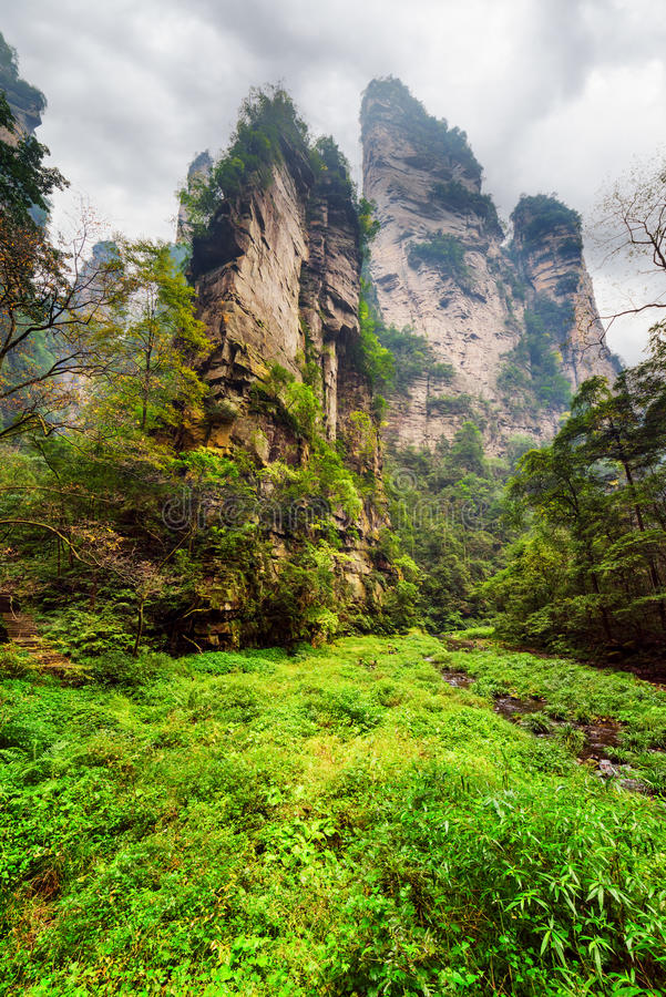 Bodemmening van fantastische rotsen onder groene hout en kreken stock foto's
