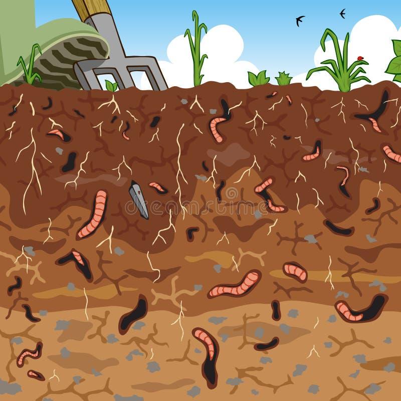 Boden stock abbildung