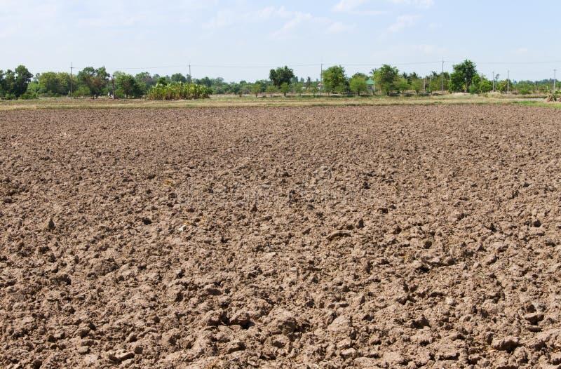 Boden eines landwirtschaftlichen Feldes stockfoto