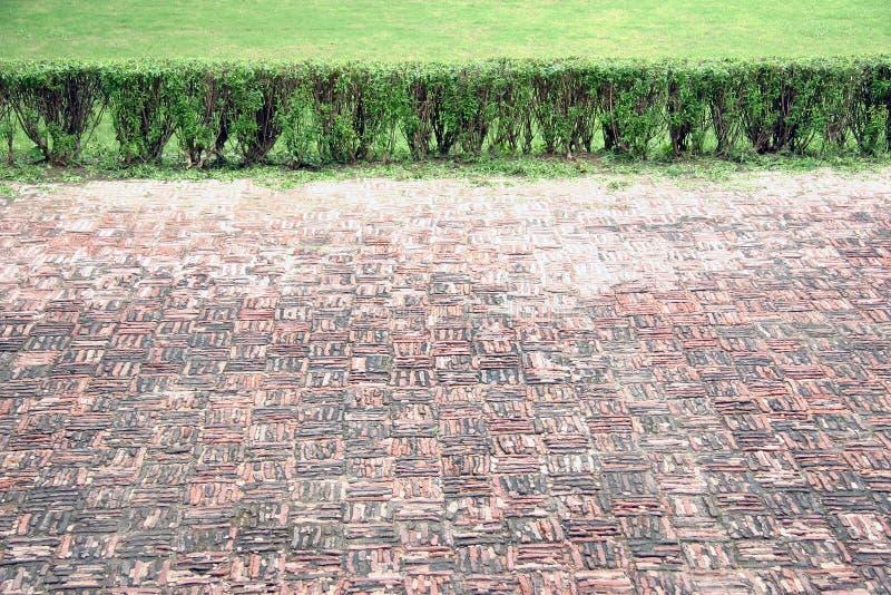 Boden und Gras lizenzfreies stockfoto