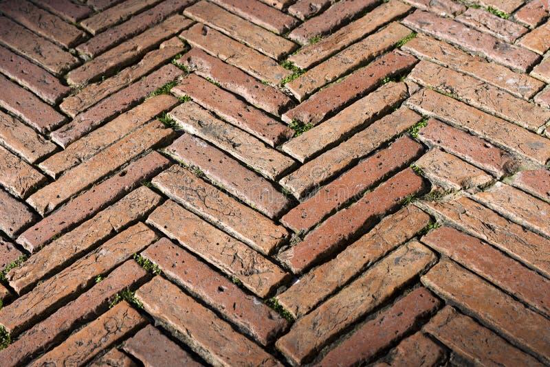 Fußboden Aus Alten Ziegelsteinen ~ Bodenbelag mit alten ziegelsteinen siena italy stockfoto bild