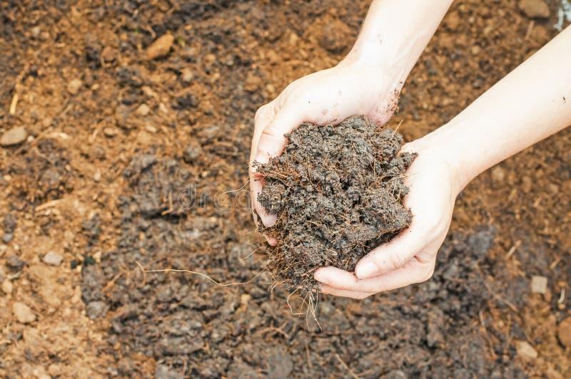 Bodenhandvoll lizenzfreies stockbild