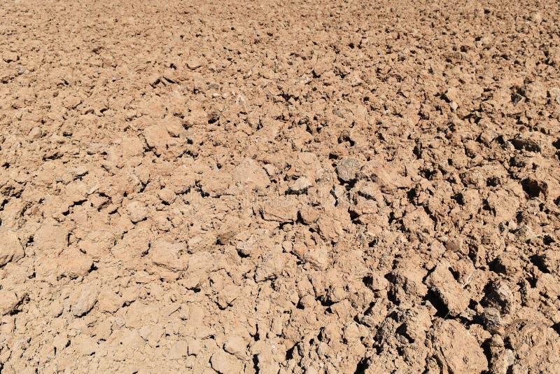 Bodenklumpen auf dem Reisgebiet vor Betriebsreis lizenzfreie stockfotos