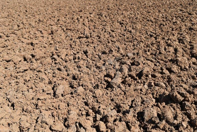 Bodenklumpen auf dem Reisgebiet vor Betriebsreis lizenzfreie stockfotografie