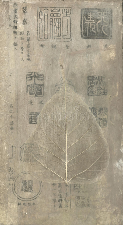 bodhi liść royalty ilustracja