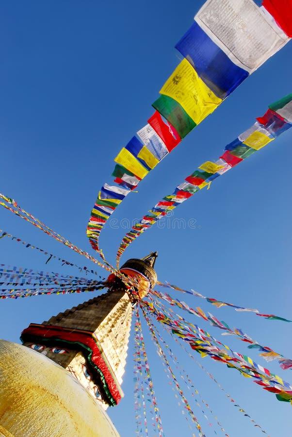 Download Bodhnath foto de stock. Imagem de sacred, holy, macaco - 10060450