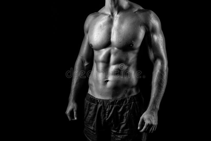 Bodibilder 'sexy' do homem. fotos de stock royalty free