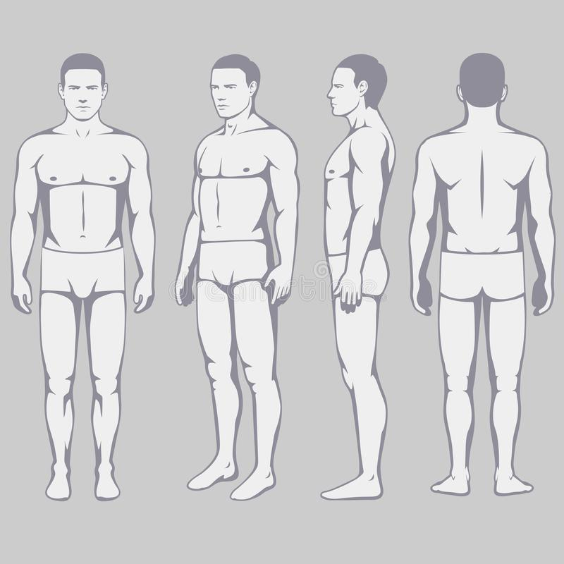 Free Body Anatomy, Vector Man Front Back Side Stock Images - 100212294