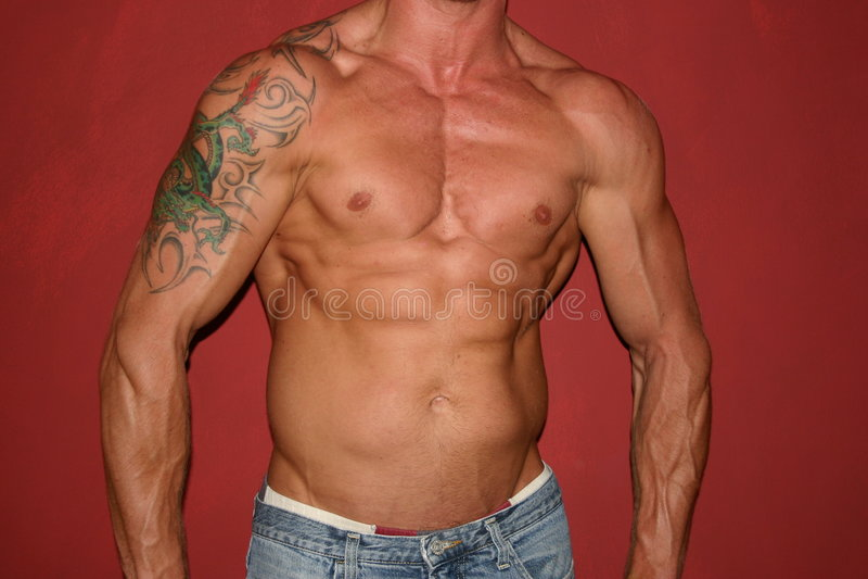 Body builder. Bodybuilding stock image