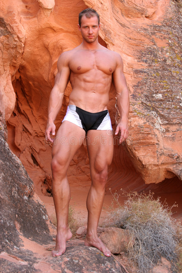 Download Body builder stock photo. Image of fitness, handsome, achiever - 1716632