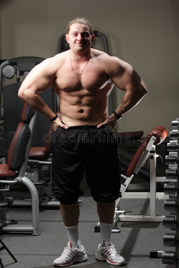Download Body-builder stock image. Image of indoors, fitness, body - 7019215