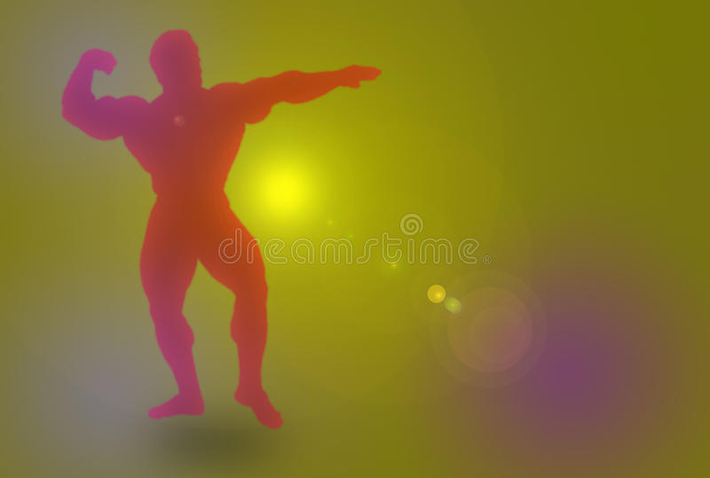 Download Body Builder stock illustration. Image of model, male - 9598138