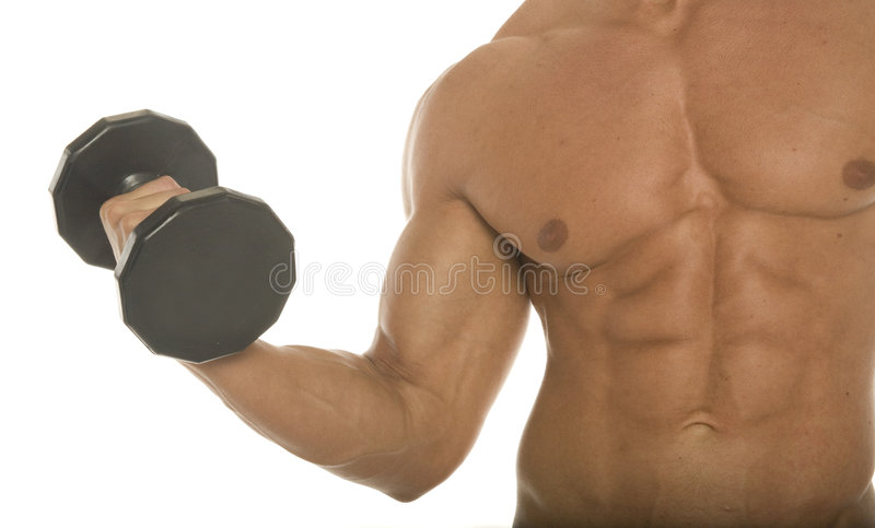 Body builder arm and chest royalty free stock photos