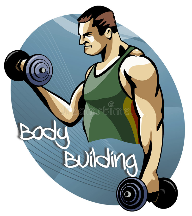 Download Body Building Training Session Stock Illustration - Image: 6809461