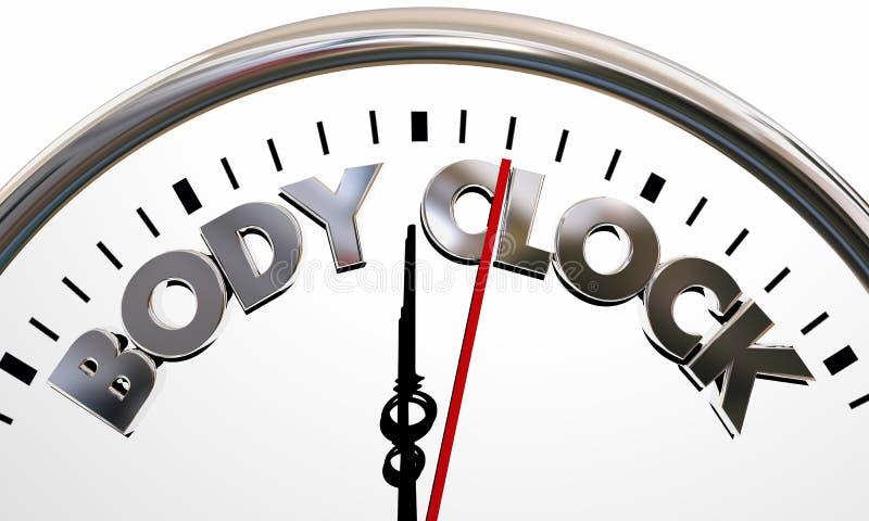 Body Clock Health Wellness Life Longevity Words. 3d Illustration royalty free illustration