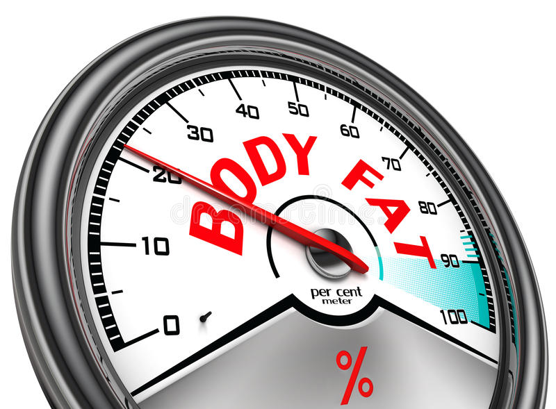 Body fat conceptual meter royalty free illustration