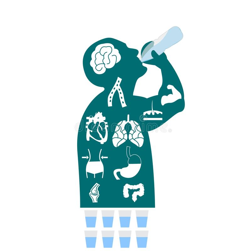 Body health infographic illustration drink water icon dehydration symptoms royalty free illustration