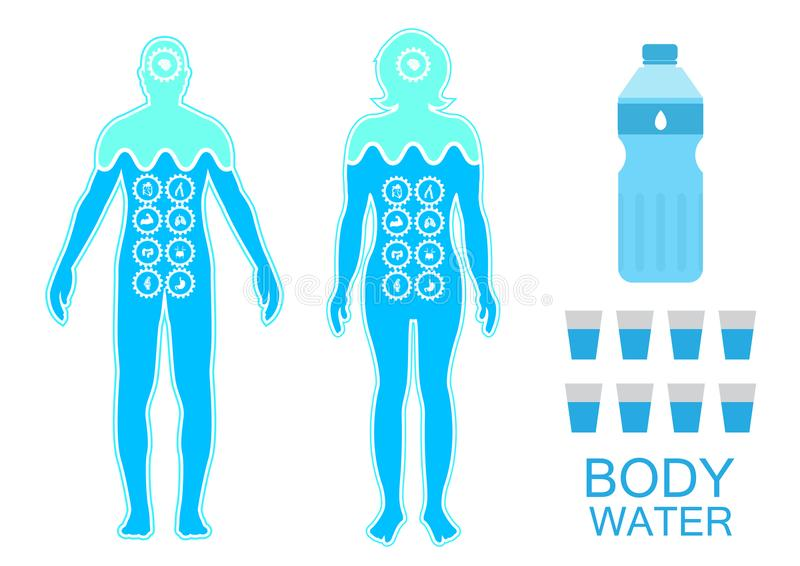 Body health infographic illustration drink water icon dehydration symptoms vector illustration