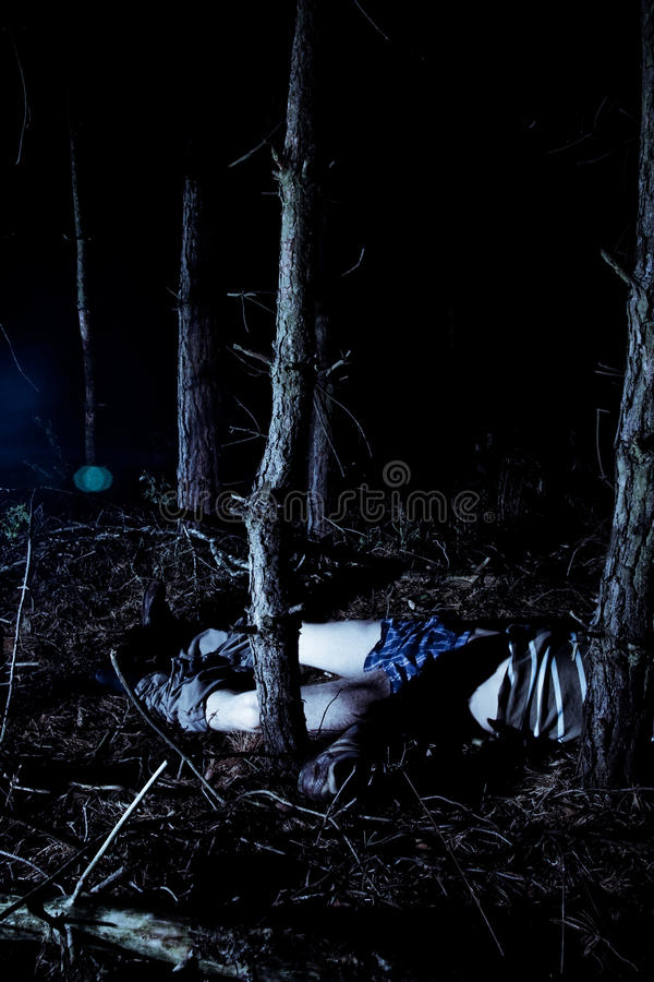 Free Body In Woods At Night Stock Images - 13545844