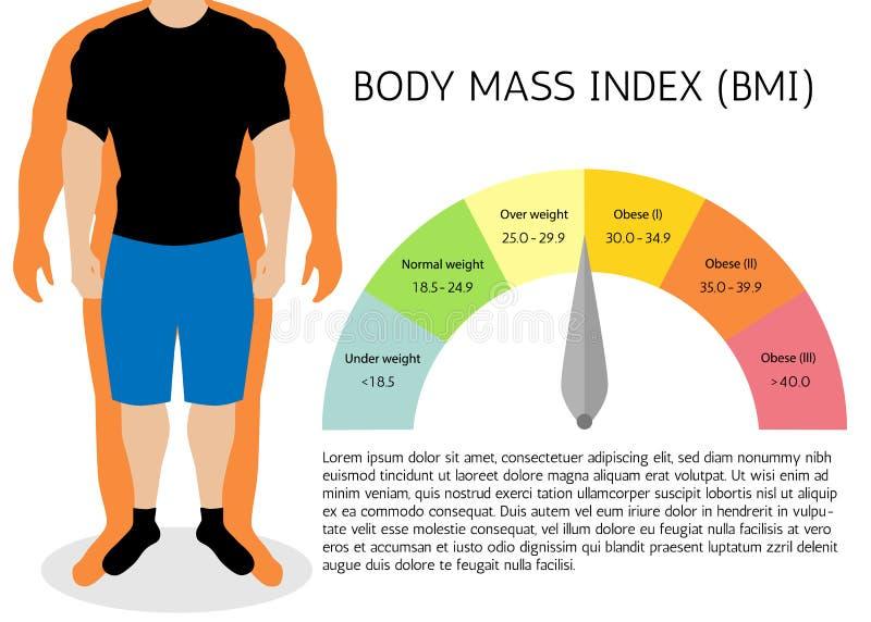 Body-Maß-Index, Illustration Mannschattenbilder Männlicher Körper mit unterschiedlichem Gewicht vektor abbildung
