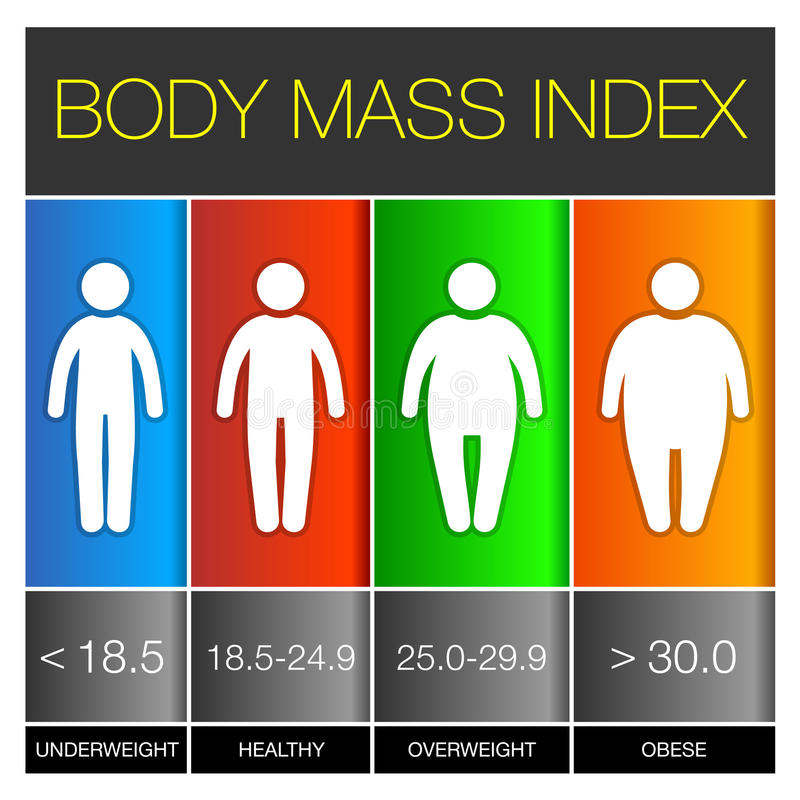 Body-Maß-Index Infographic-Ikonen Vektor lizenzfreie abbildung