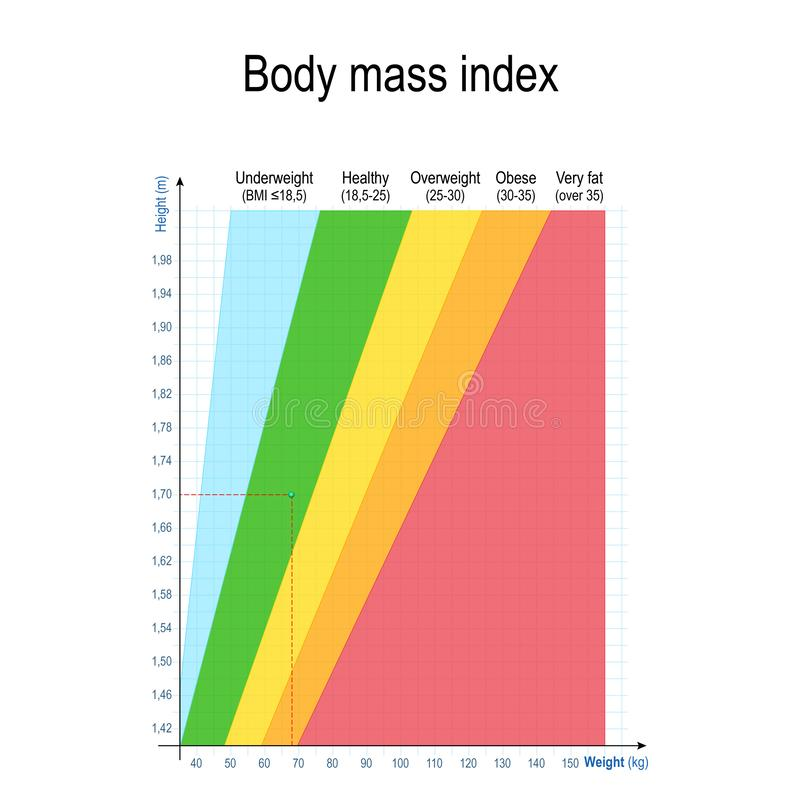 Body mass index BMI. Weight Height Chart royalty free illustration