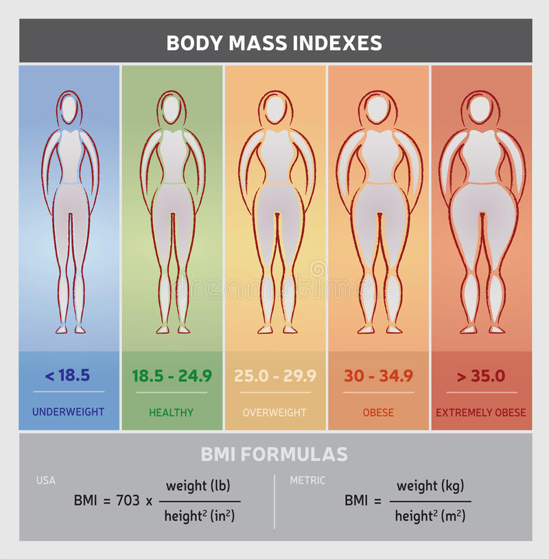 Body Mass Index Diagram Graphical Chart with Body Silhouettes, Five Classes and Formulas. Body Mass Index Diagram Graphical Chart including Body Silhouettes with royalty free illustration
