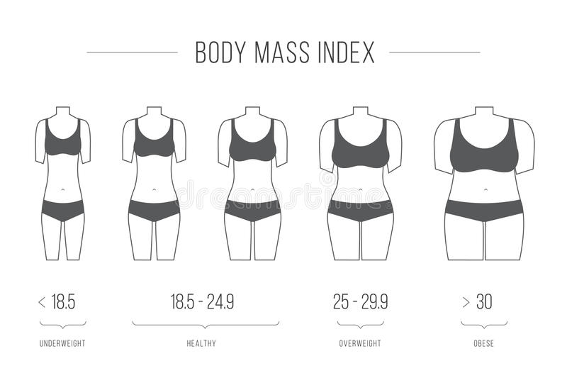 Body Mass Index illustration, female figure. Collection of female body types. Set of thick and thin figures. Thin line icons. Vector illustration. Flat style royalty free illustration