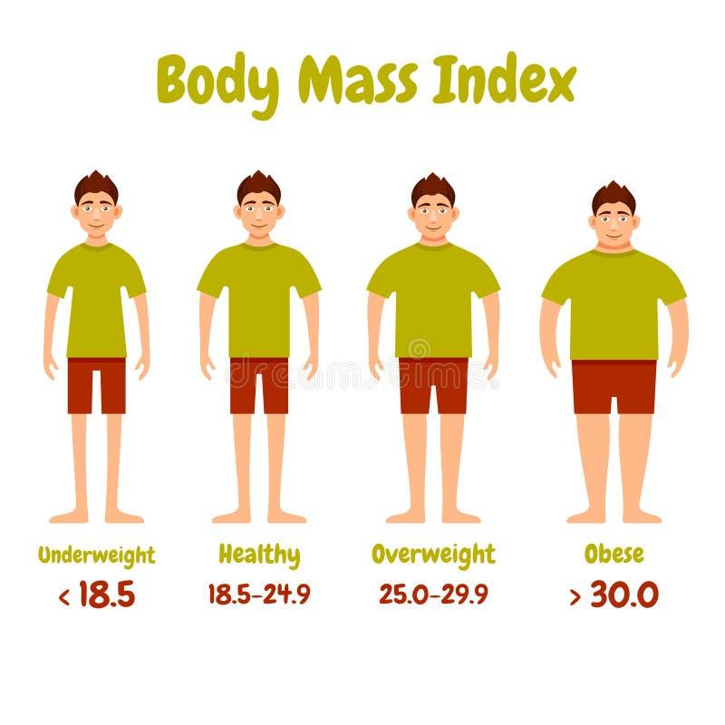 Body mass index men poster. Body mass index men infographics poster. Vector illustration stock illustration