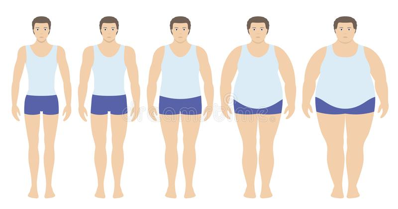 Body mass index vector illustration from underweight to extremely obese in flat style. Man with different obesity degrees. Male body with different weight stock illustration