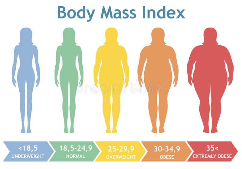 Body mass index vector illustration from underweight to extremely obese. Woman silhouettes with different obesity degrees. stock illustration