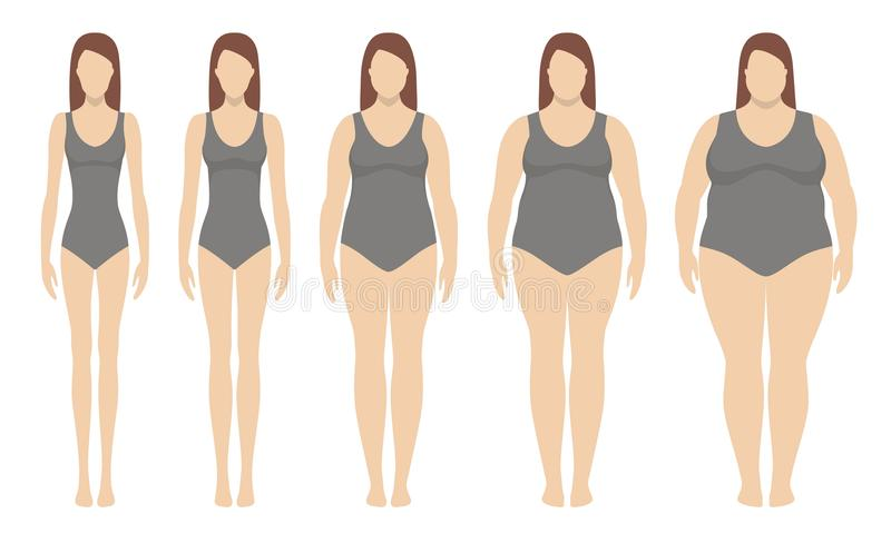 Body mass index vector illustration from underweight to extremely obese. Woman silhouettes with different obesity degrees. Weight loss concept stock illustration