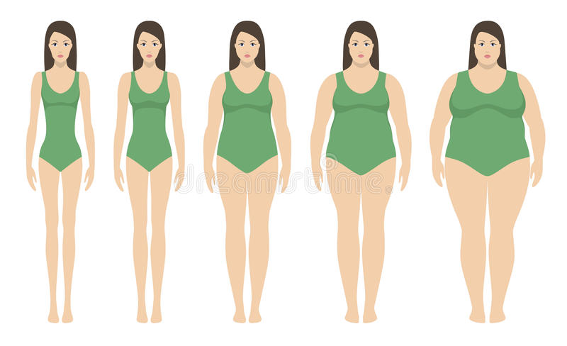 Body mass index vector illustration from underweight to extremly obese. Woman silhouettes with different obesity degrees. Female body with different weight royalty free illustration