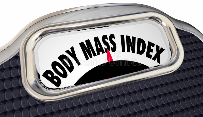 Body Mass Index Words Scale BMI Measure. Overweight Fat Loss stock illustration