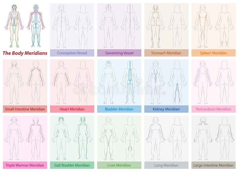Body Meridians Chart Woman Colors. Body meridian chart of a womans body - with names and different colors - Traditional Chinese Medicine. Isolated vector stock illustration